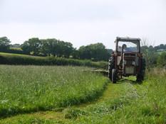 mowing hay summer 2013
