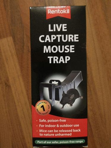 Live capture mouse trap