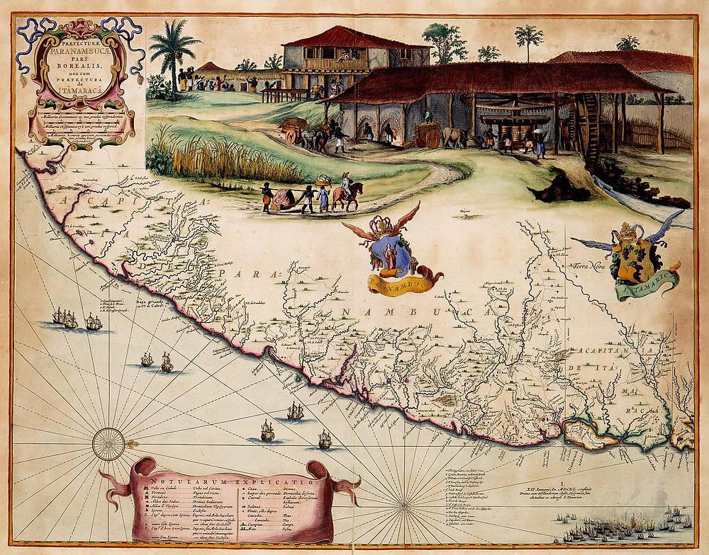 História da Cachaça Engenho de Açúcar Itamaracá Pernambuco