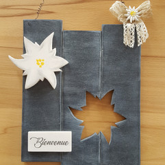 Edelweiss,  tons gris, env. 20 x 25 cm