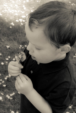 Why Choose Beautiful Autism?