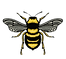 Bee-illustration-7_edited_edited.png