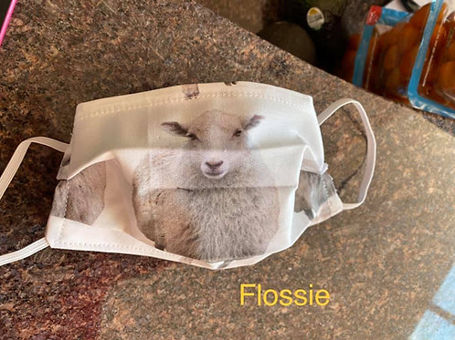 Flossie Mask!