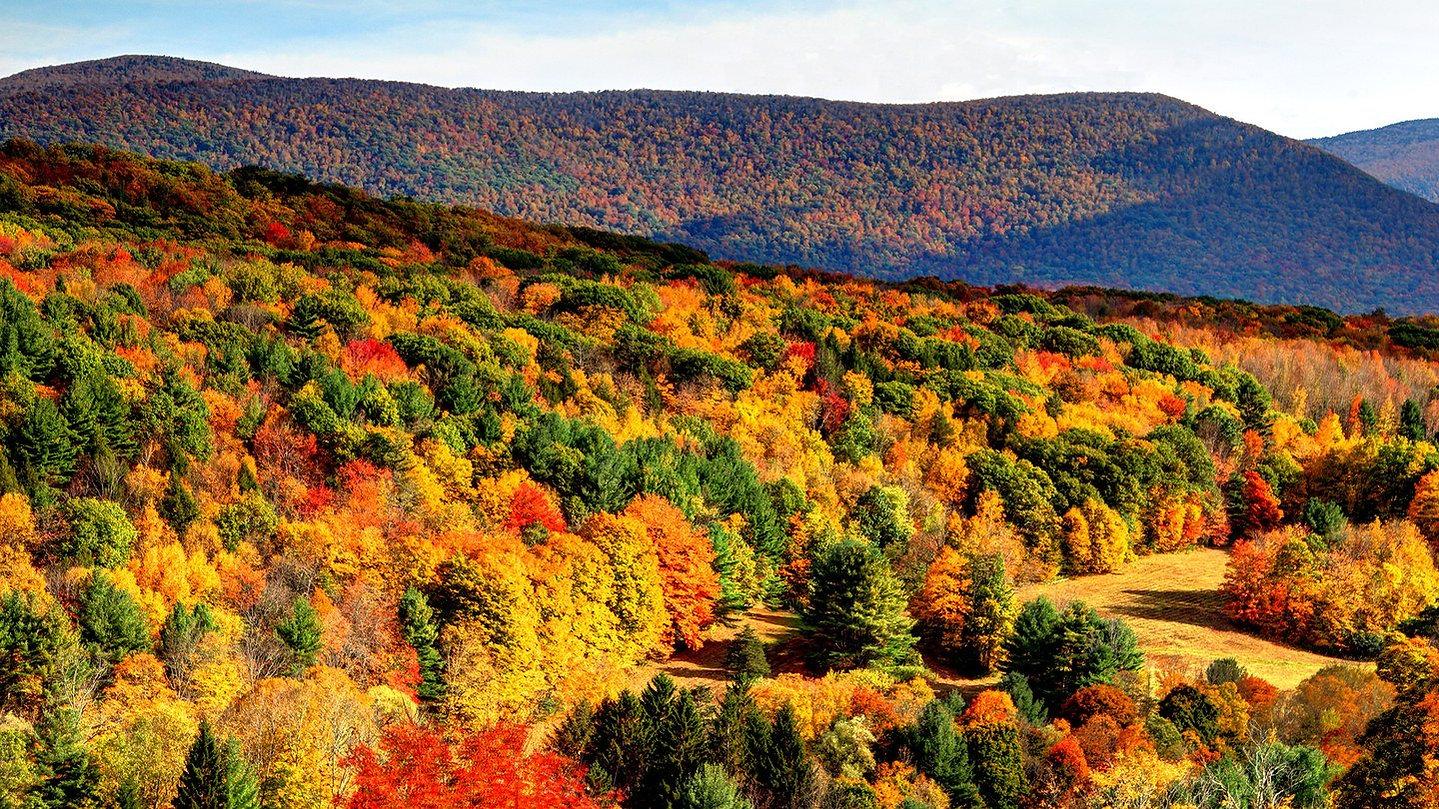fall berkshire.jpg