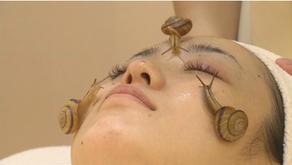 Caracoles en tu masaje facial... una piel increíble