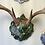 Thumbnail: RaK Kaps Trophy Display Antler Mounting System