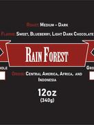 Rain Forest.jpg