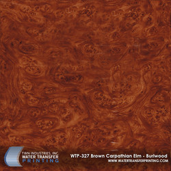 WTP-327 Brown Carpathian Elm - Burlwood