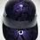 Thumbnail: Plum Crazy Purple Insanity Skulls Bump Cap