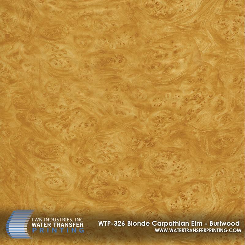 WTP-326 Blonde Carpathian Elm - Burlwood
