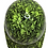 Thumbnail: copy of Hi Vis Green Ace Of Skulls Satin Ridgeline Cap Style