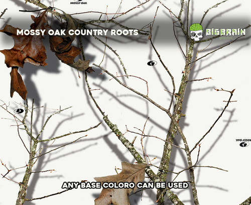 Country_Roots_Winter_Mossy_Oak_Winterlan