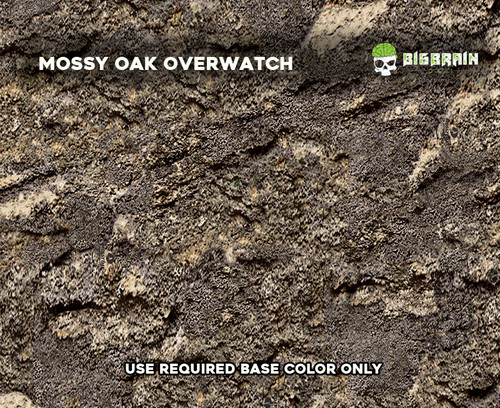 Bottomland_Mossy_Oak_Overwatch_Big_Brain