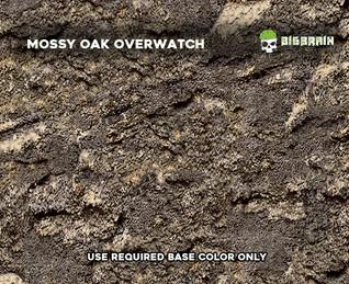 Bottomland_Mossy_Oak_Overwatch_Big_Brain