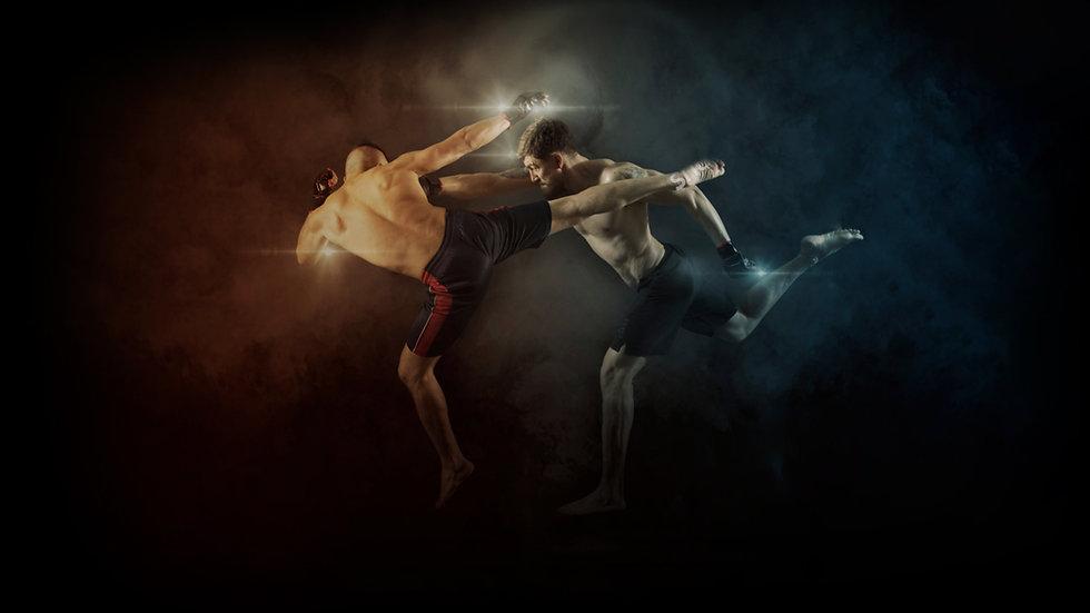 UFC stats API Bellator Stats MMA Stats