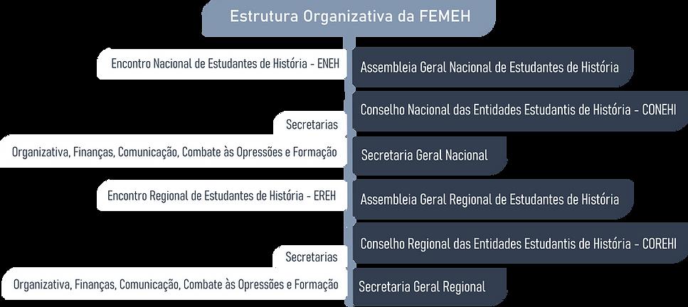 ORGANOGRAMA DA FEMEH.png