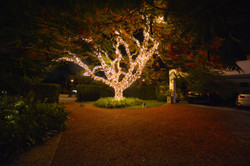 Private Exterior Lighting Project