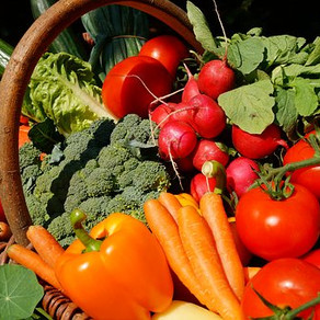 Frauen +45 und warum dir besonders Gemüse jetzt gut tut 🍅🍆🍄🍠 #vollwertig pflanzlich