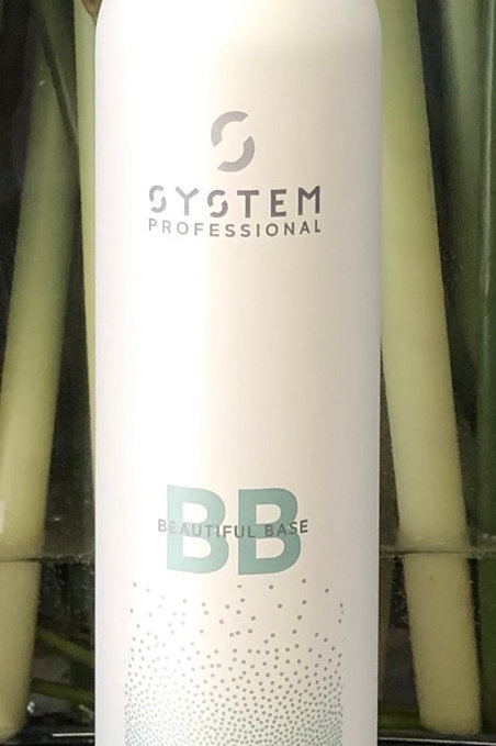 SP Style Instant Rest Dry Shampoo