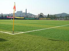 Спортивные поля, футбольное поле, минифутбол, теннисный корт, гольф