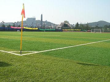 Футбольные искуственные газоны, спортивные поля