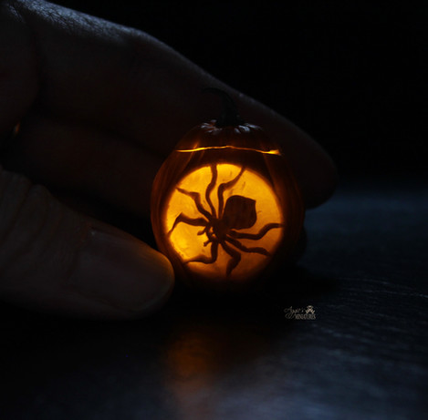 Jack-o'-lantern with spider (2020)