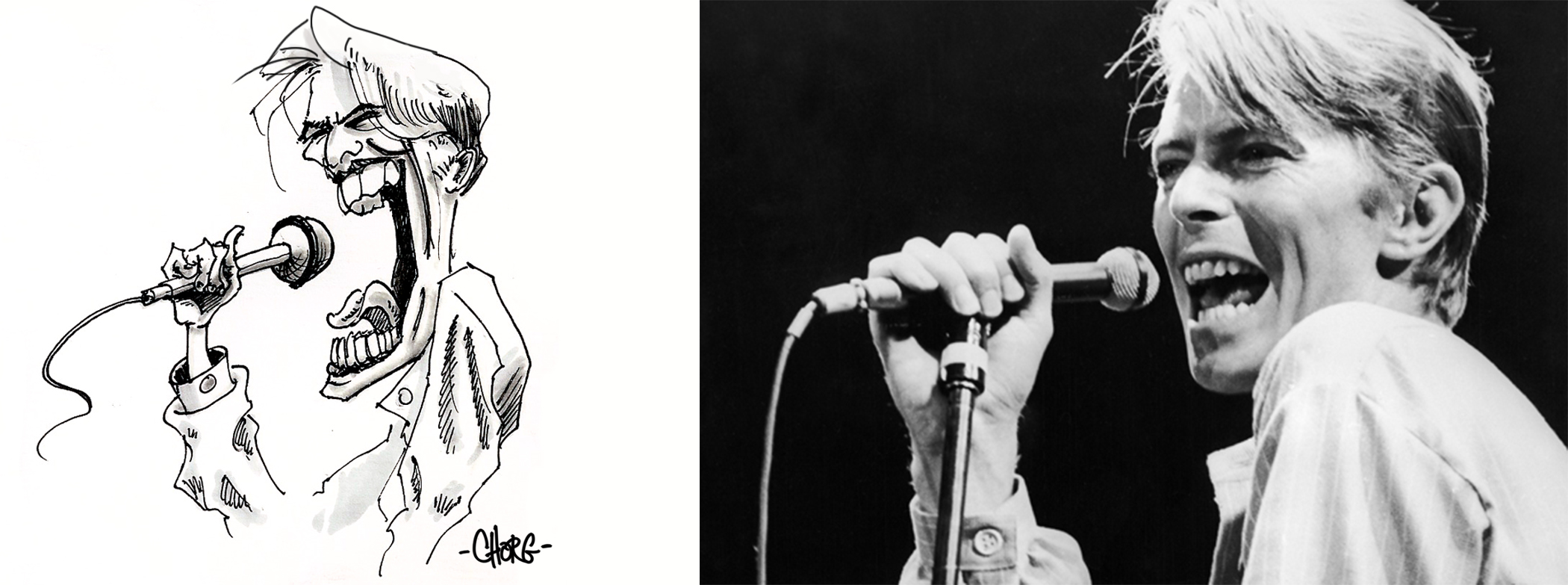D.Bowie.