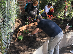 Multihouse Joins Covenant House on National Plant a Flower Day