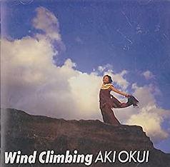 a02_wind_climbing.jpeg