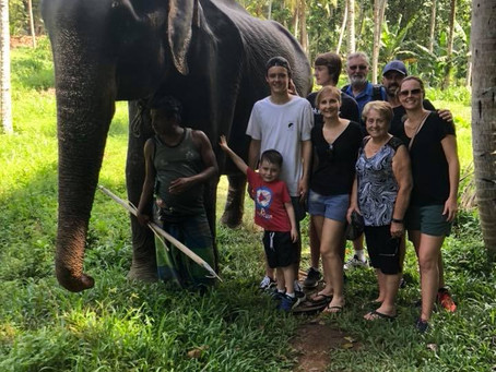 Always an adventure!  Trials & tribulations of the family holiday to Sri Lanka