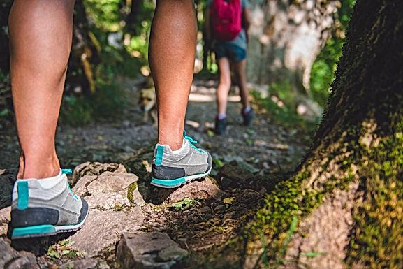 Hikenic Glen Rock Yuelarbah Walking Track
