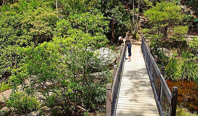 Hikenic Yuelarbah Walking Track-Fully Booked