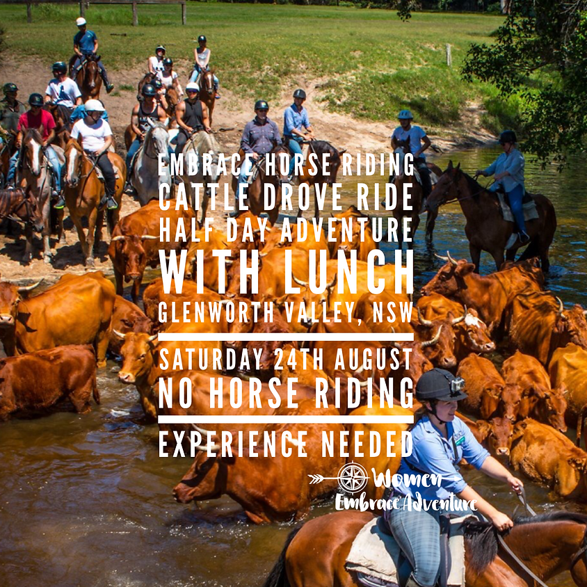 Embrace Horse Riding / Cattle Droving Ride - Glenworth Valley NSW