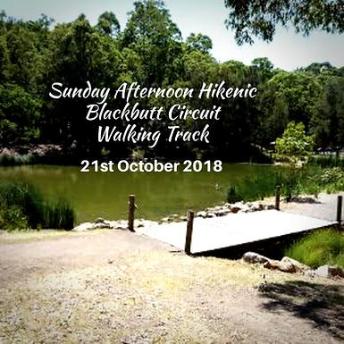 Afternoon Hikenic (Hike + Picnic) Blackbutt Circuit Walking Track