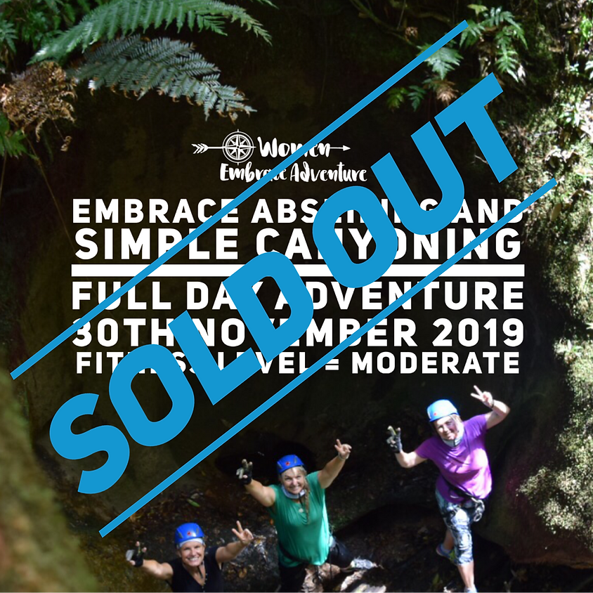 Embrace Abseiling and Simple Canyoning Full Day Adventure - The Watagans  NSW