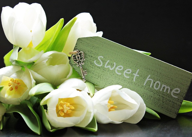 Tulips Home Sweet Home Sign