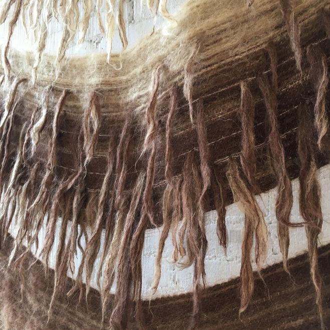 Woolly / detail