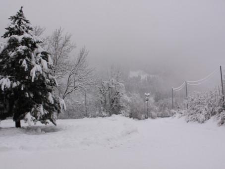 Der Schnee hat uns im Griff