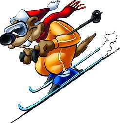 Cartoon skifahrer.jpg