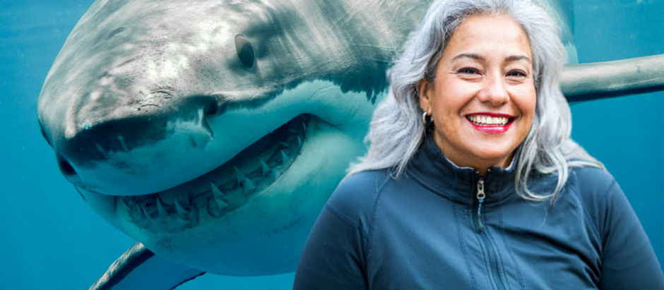 Meet the Accent Coach Who Helped This Great White Shark Sound Less Australian