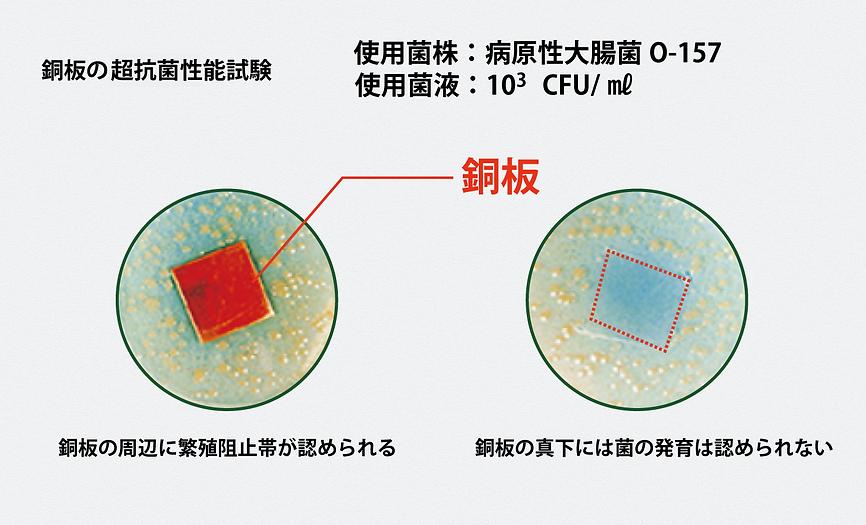 銅板の超抗菌性能.png