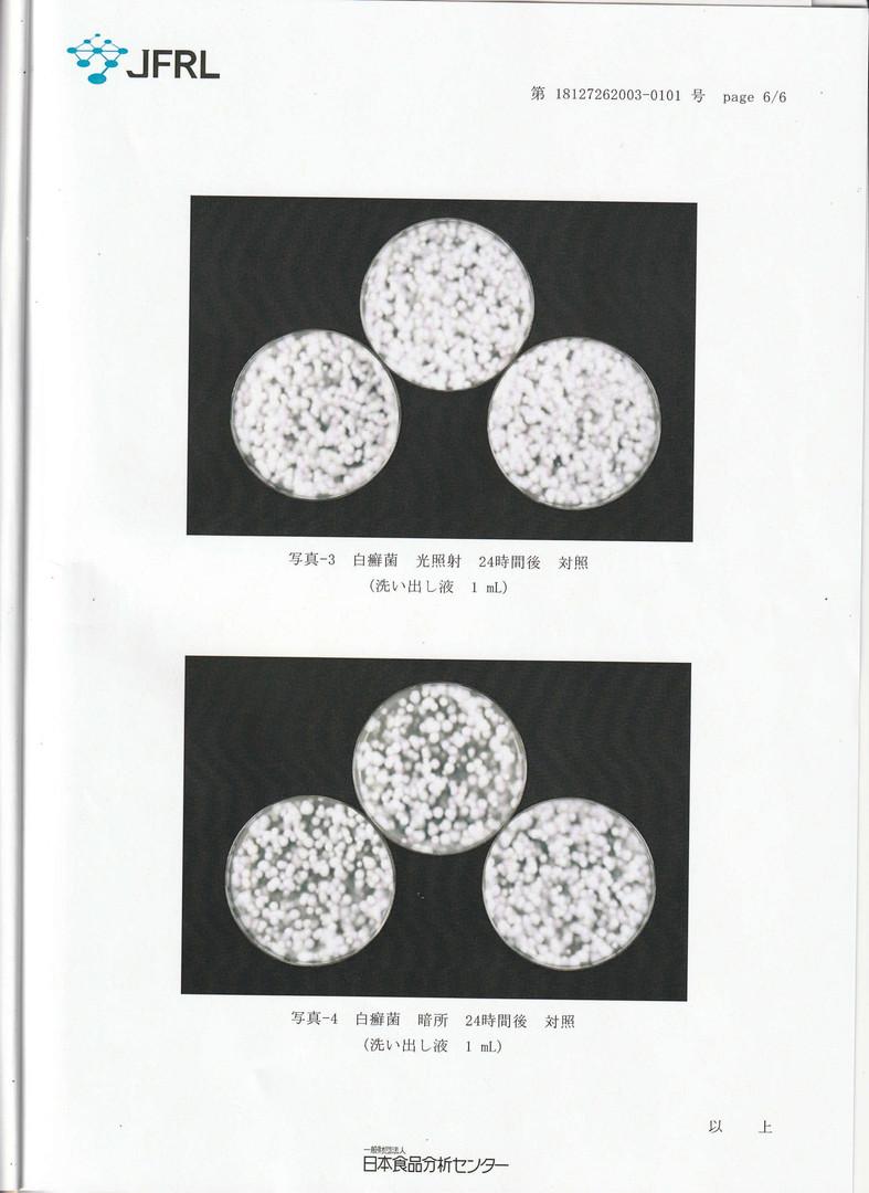 白癬菌試験-6.jpg