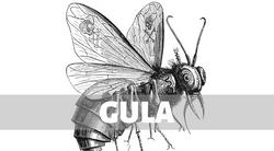 3.GULA