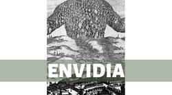 5.ENVIDIA