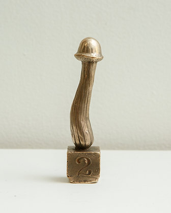Magic Mushroom #2 by R. Scott Long