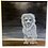 Thumbnail: Ghost Lion