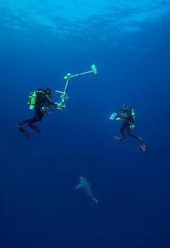 Phantom camera Underwater Housing, caisson vidéo sous marin