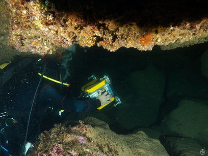 Subspace Pictures Diver ORUS photogrammetry spread