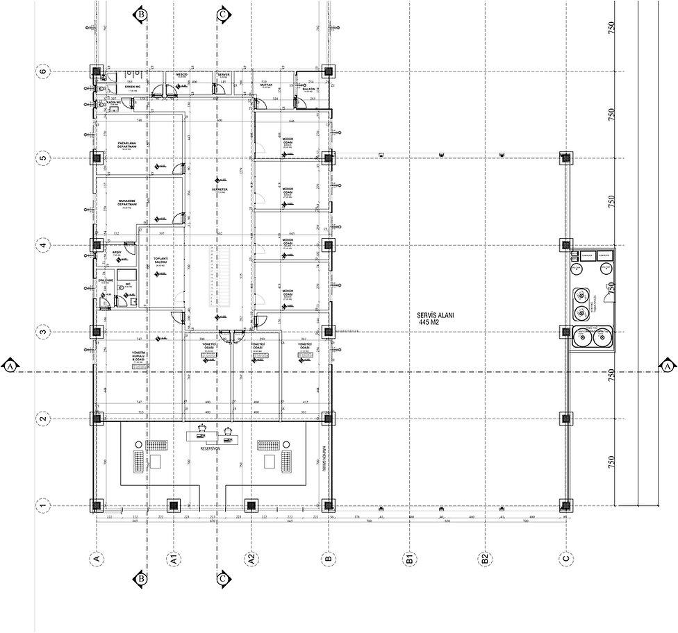 çağlayan mimari_26092018 Model (4).jpg