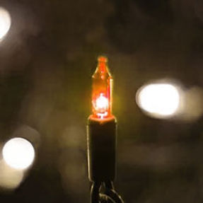 amber-bulb.jpg